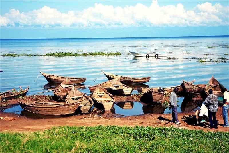 ウガンダ画像