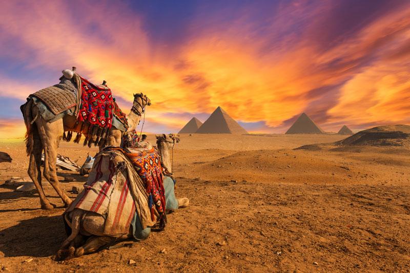 エジプト画像